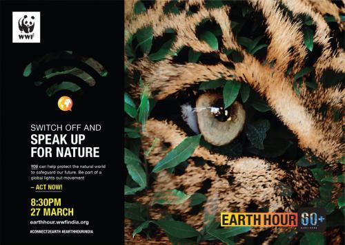 Speak Up for Endangered Wildlife